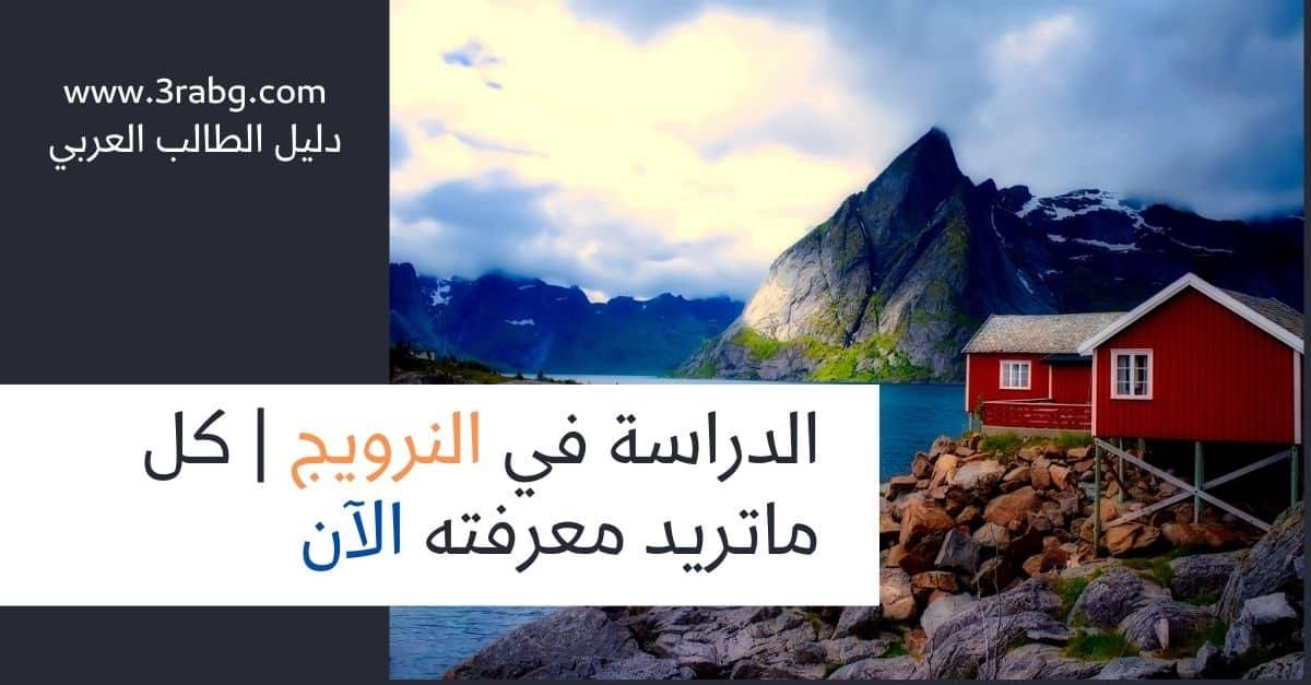 الدراسة في النرويج | كل ماتريد معرفته الآن